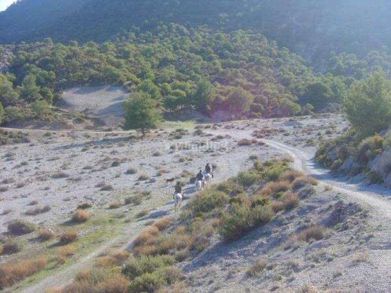 Paisajes del Valle de Lecrin