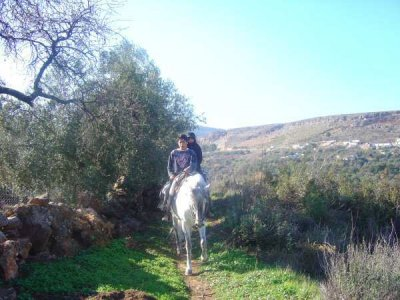 Ruta a caballo por Albuñuelas,3h