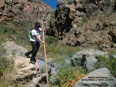 Arico Natural ecología & ocio activo Senderismo