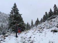 En la sierra de las Nieves