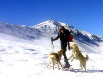 Asociación Deportiva Terral Yecla Esquí de Fondo