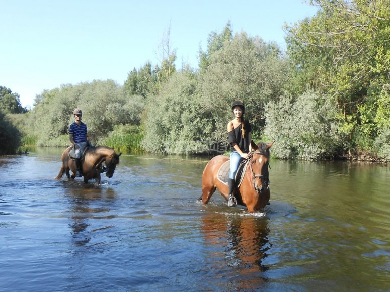 Crossing the river by horse