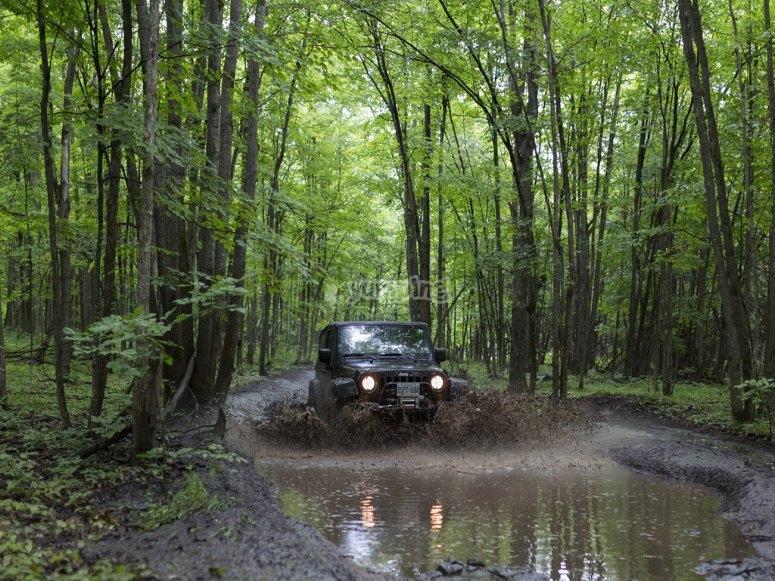 4x4 through the mud