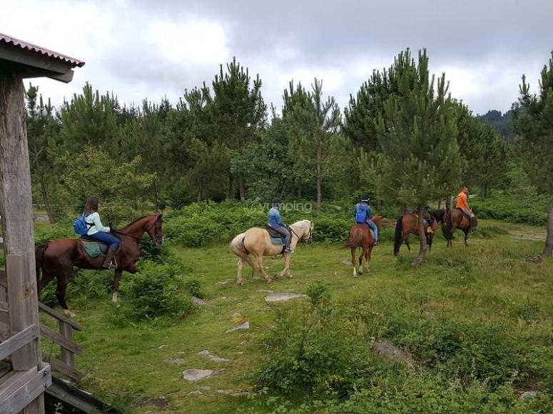 Excursion ecuestre en Pardavila