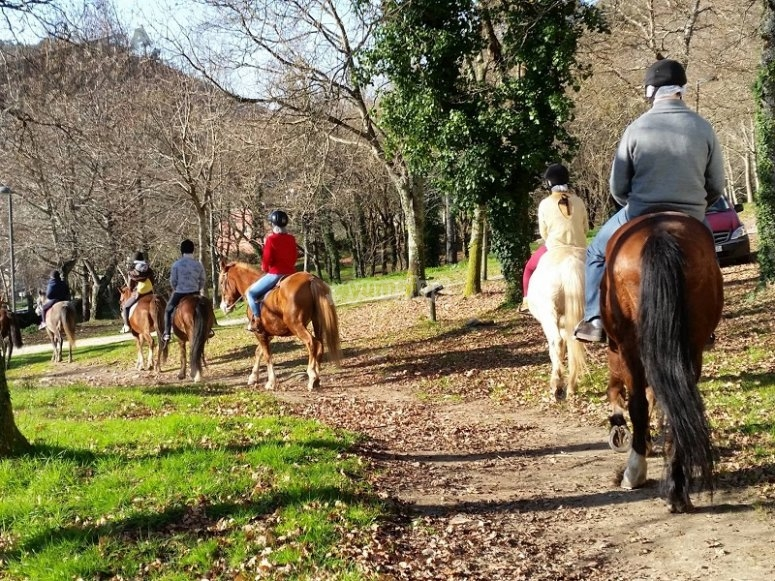 Montar a caballo en Pardavila