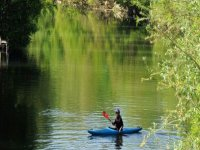 Canoeing surrounded by nature