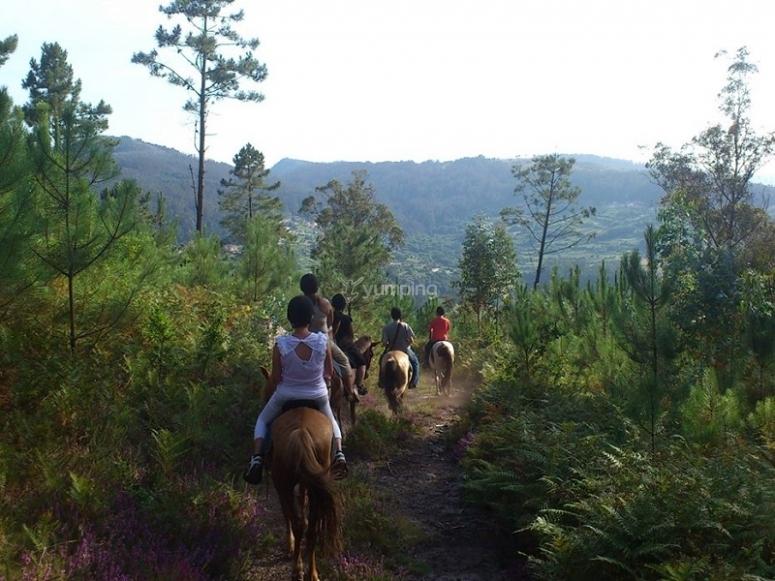 Horse ride route in Pardavila