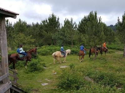 Ruta a caballo en Pontevedra 2 horas