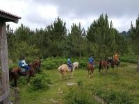 Equestrian excursion in Pardavila