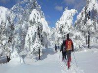 Raqueta en los Pirineos