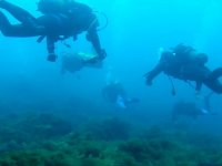 普伦齐亚潜水的深处