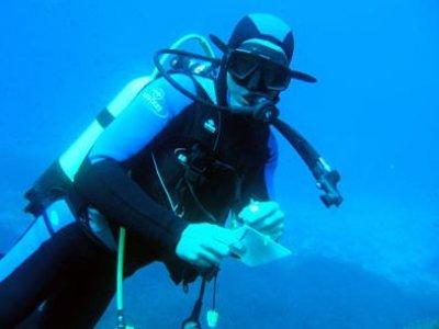 Blue-Adventure Diving Center