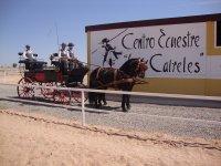 Carruaje进入农场盒