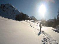 Camino de raquetas de nieve