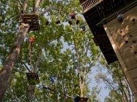 Circuitos de árboles