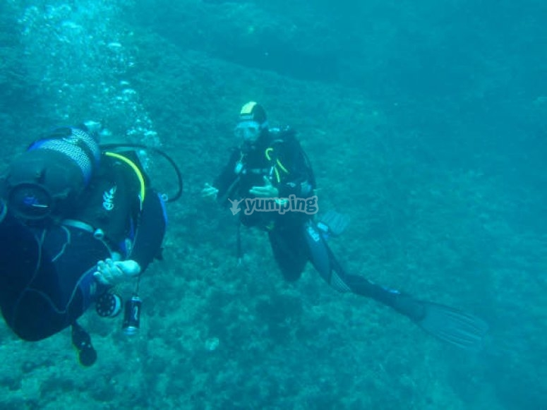Diving in Calp