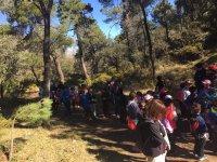 Senderismo en grupo en los alrededores de Granada