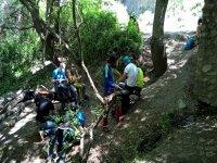 Excursion por el bosque en Granada