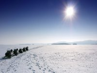 Motos de nieve en Pirineos