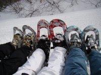 成雪鞋在树林里与朋友旅行