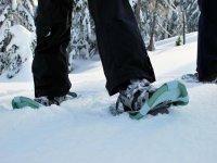 Ponte unas raquetas de nieve