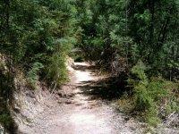 ruta de tierra