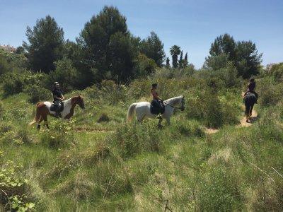 Excursión a caballo por el Garraf de 2 horas