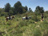 Paseo a caballo por el Garraf