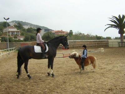 Excursión a caballo de 4 o 5 horas