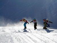 carrera snowboard
