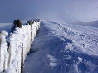 Nieve recien caida