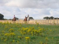 Rodeando la finca a caballo