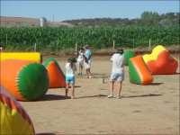 Inflatable field