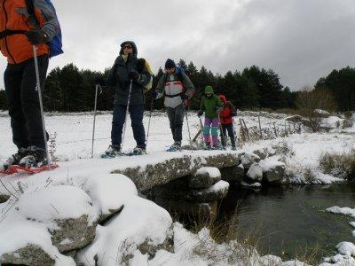 Snowshoeing tour in Navacerrada