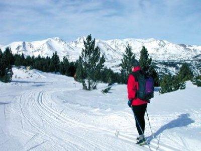 Arbolio Aventura Esquí de Fondo
