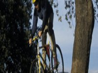 Mountain bike descent