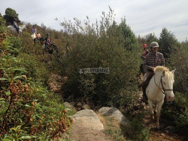 Horse riding tours Becerril de la Sierra
