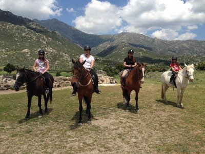 Horse riding tours in Madrid mountains