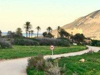 Camino rural en Almeria