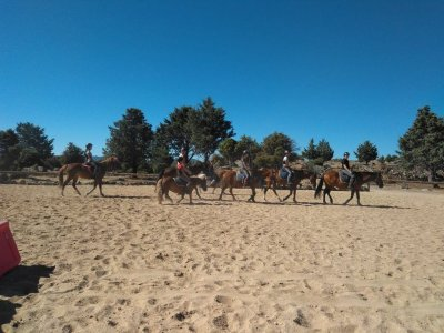 Clase de iniciación a la equitación 30 min