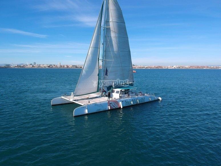 Paseo en barco en Altea