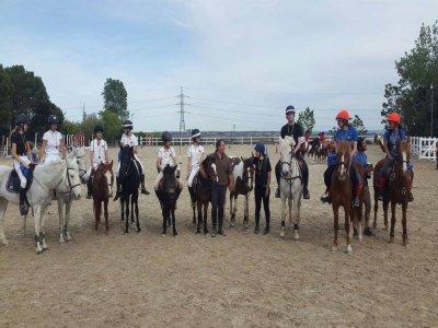 Bonos especiales 6 clases de equitación