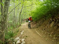 Ciclista de btt en el sendero