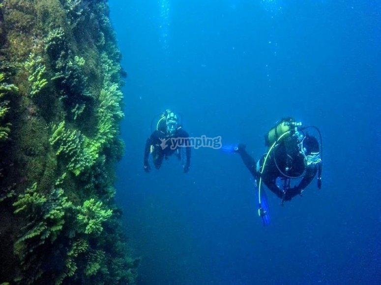 Buceo en Illes Formigues