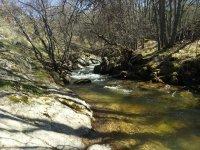 Ribera del rio