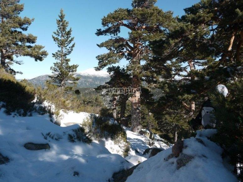 Sierra Navacerrada rutas de nieve