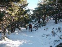 Ruta por la Sierra Navacerrada