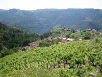 葡萄酒路线