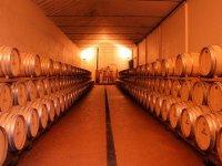 发现最好的葡萄酒厂