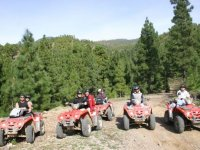 In quad between the fir trees